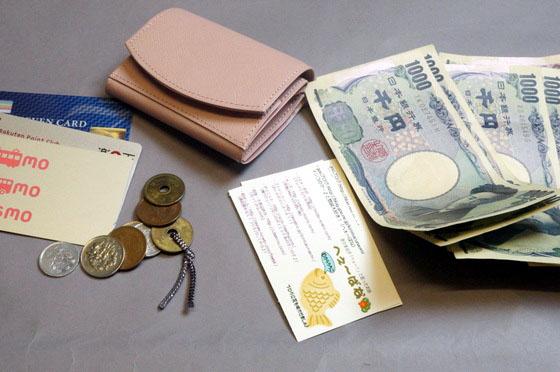 cartolare-hammok-wallet-70