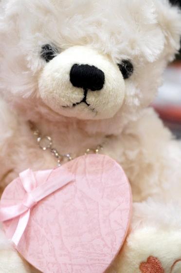 jwell-teddy-7