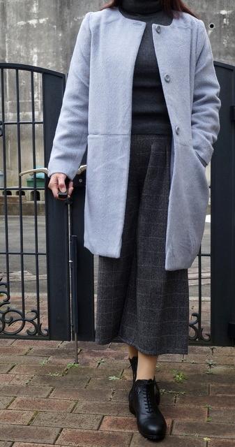 coatの着画